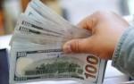 حرکت صعودی دلار ادامه نیافت.